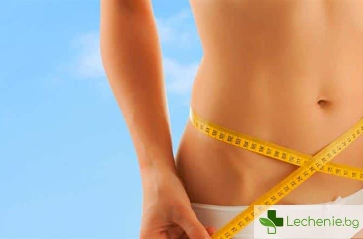 Петте най-големи мита за метаболизма
