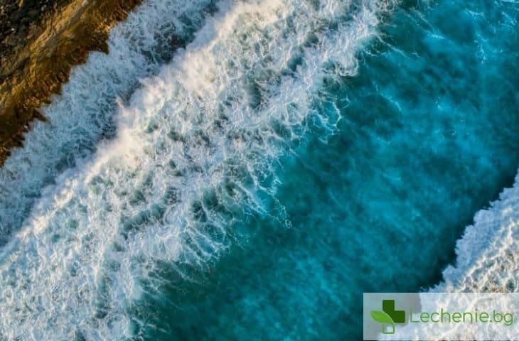 Стана ясно защо трябва да се живее по морето
