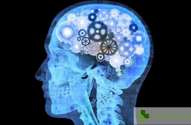 Вашето подсъзнание е по-развито, отколкото предполагате!