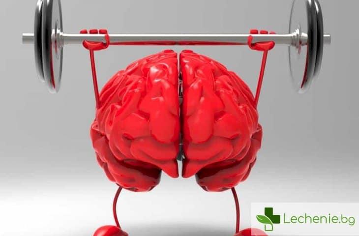 Мозъкът излиза по-рано в пенсия - защо се случва