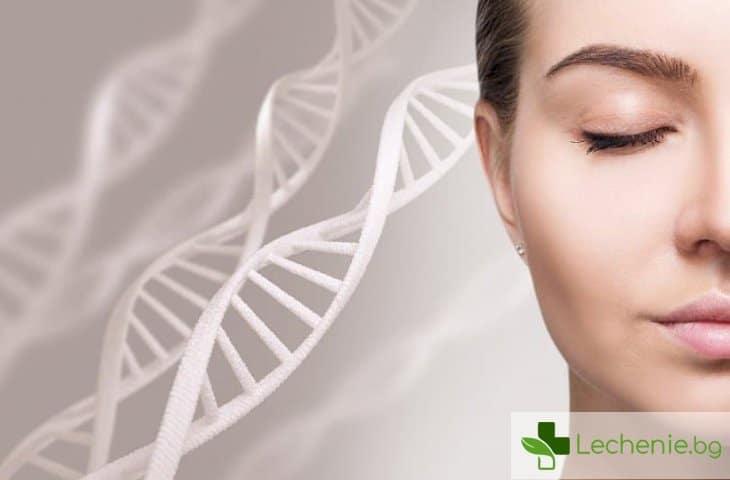 Обновяване на клетките - за колко време тялото ни става почти ново