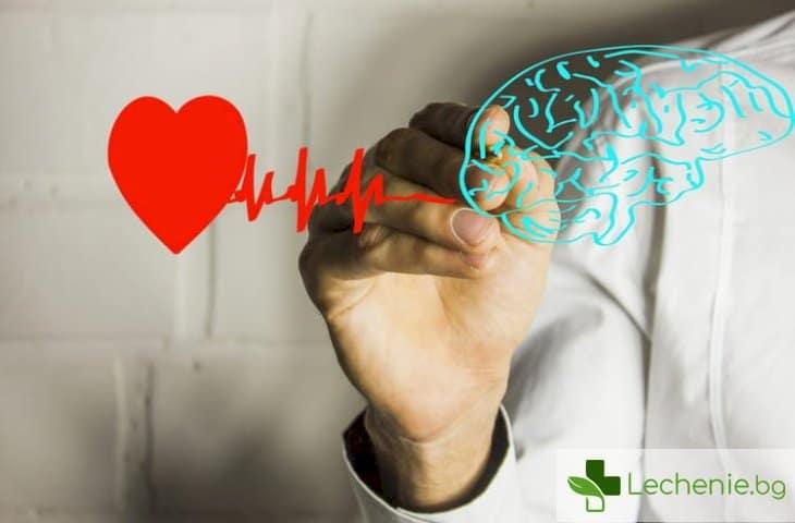 Какво свързва предсърдното мъждене със старческо слабоумие