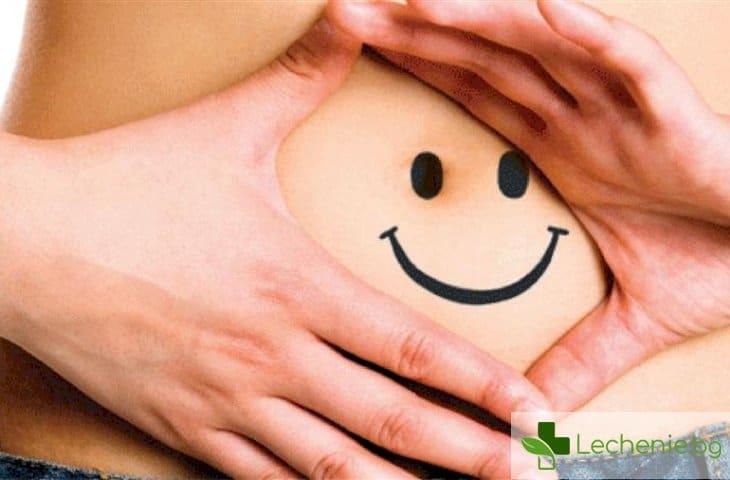 6 пребиотика за здравето на червата