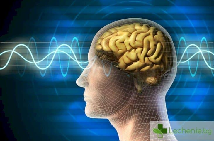 Пречистването на мозъка става, докато спим, вече е ясен механизмът