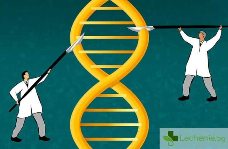 Постигнаха невероятно висока точност на редакция на генома