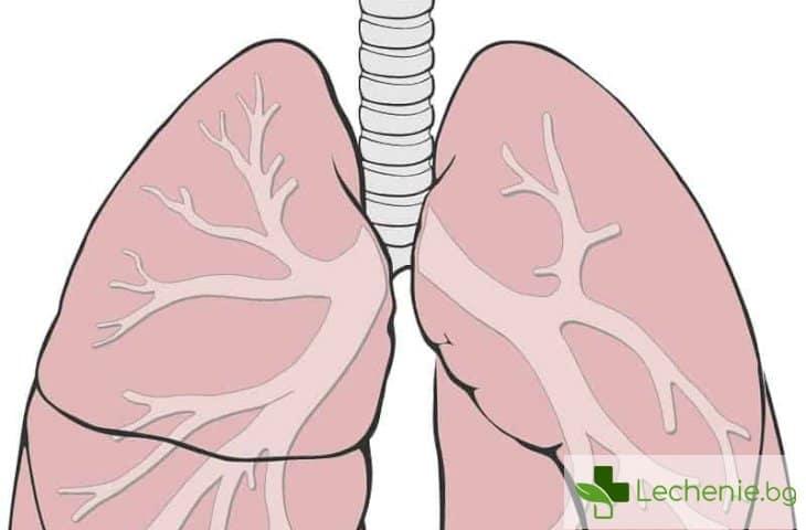 8-те най-чести респираторни заболявания