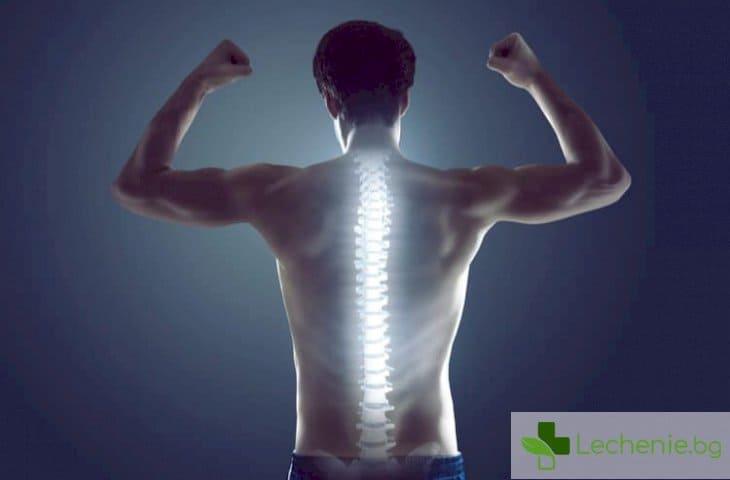 Възстановяване от травма на гръбнака - как физкултурата помага