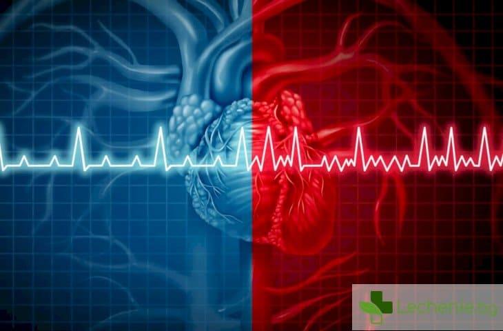 Защо сърцето внезапно започва да бие много силно и бързо