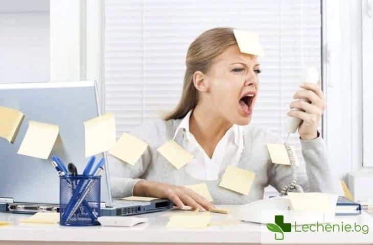 50 доказани съвета за намаляване на стреса