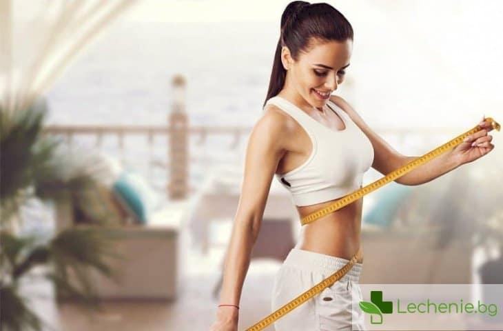 Най-полезните диети, обявени от СЗО - топ 3