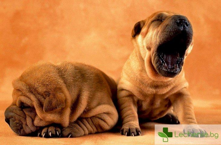 Кои са симптомите на хроничната умора