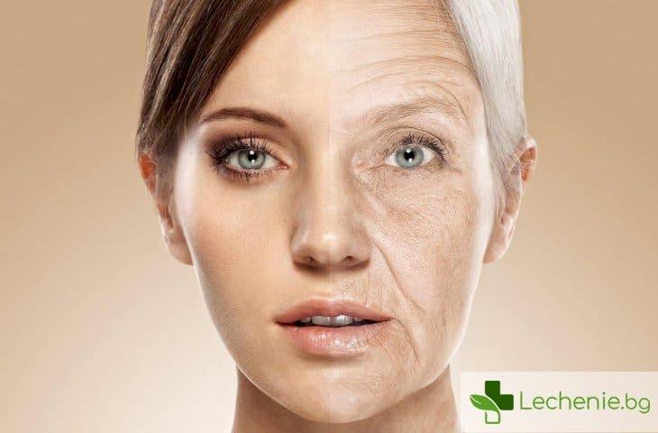 Лекарство за вечна младост може да спаси и от старческо слабоумие