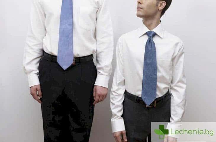 Идеалният размер на пениса зависи от височината на мъжа