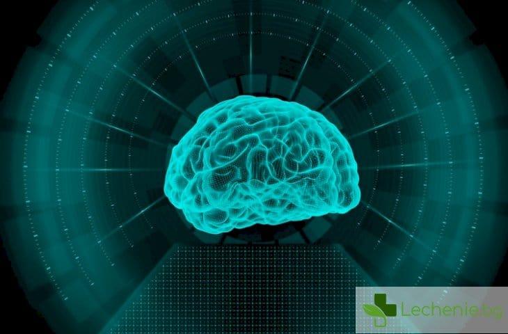 Със 100 часа ЯМР постигнаха невероятно висока точност на изображения на мозъка