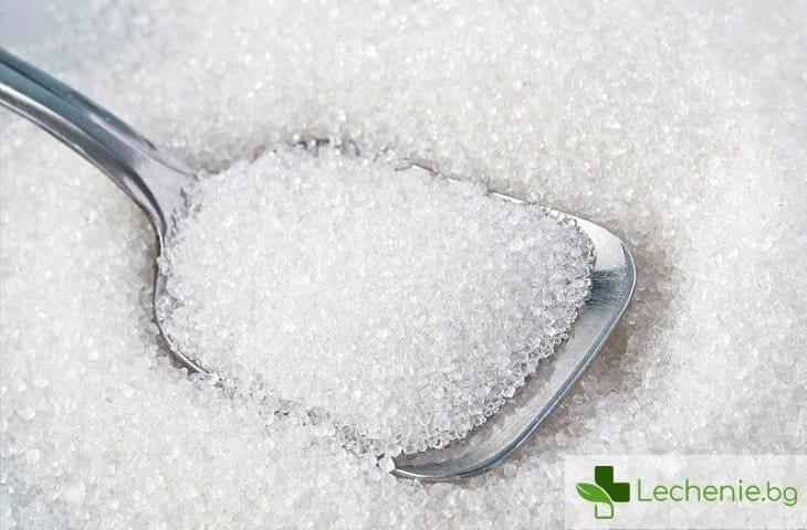 Как захарта влияе на мозъка ни?