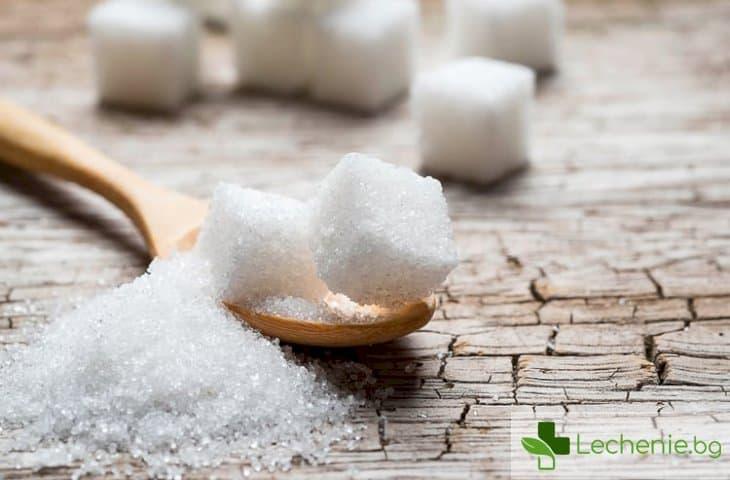 Как захарта ще ни помогне да се справим с респираторните заболявания