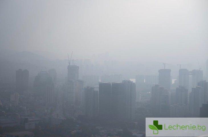 Чистият въздух може невероятно бързо да ни изцери
