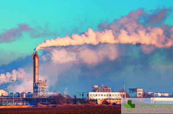 Замърсяването на въздуха се свързва с рак на мозъка