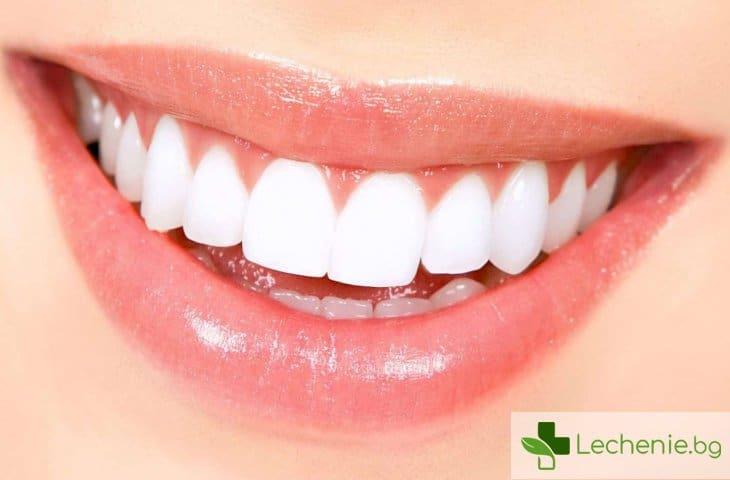 Изобретена е алтернатива на зъбните импланти - нови зъби